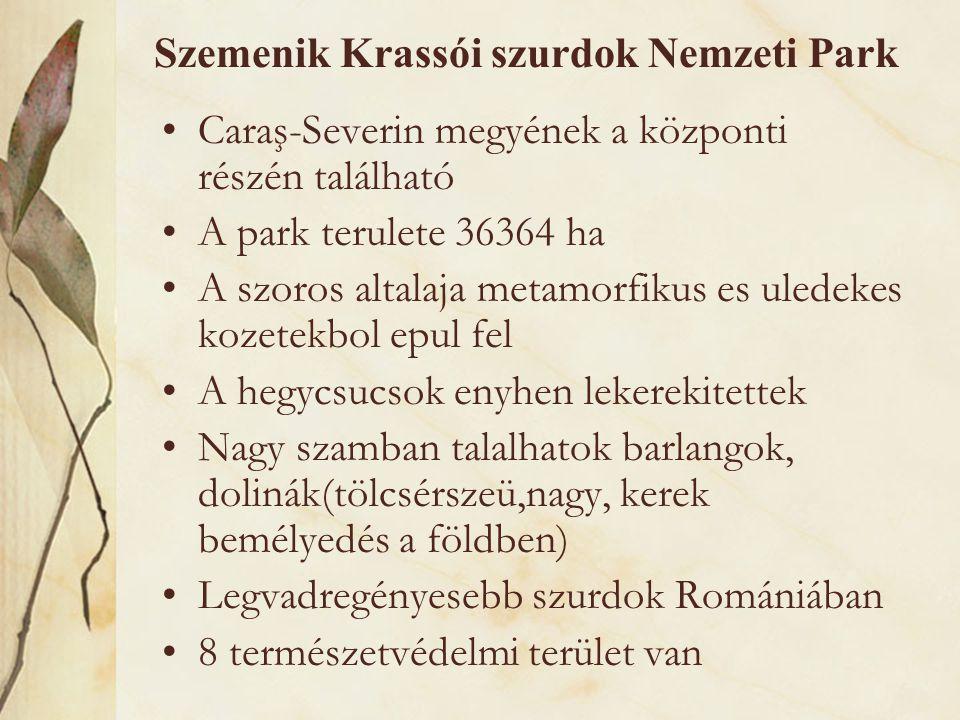 Szemenik Krassói szurdok Nemzeti Park