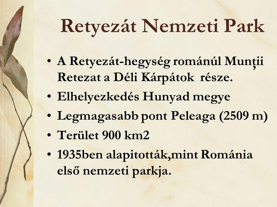 Retyezát Nemzeti Park A Retyezát-hegység románúl Munţii Retezat a Déli Kárpátok része. Elhelyezkedés Hunyad megye.