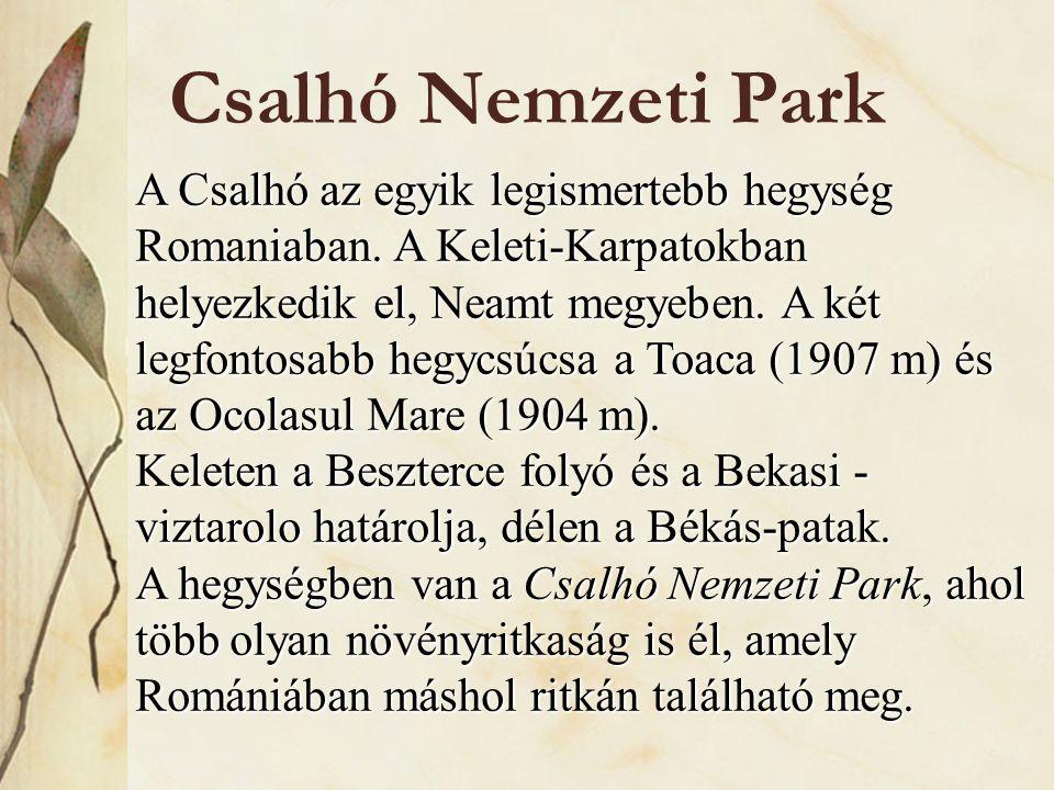 Csalhó Nemzeti Park