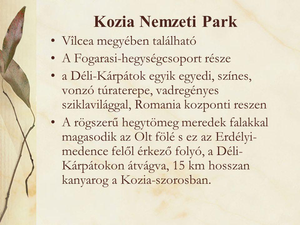 Kozia Nemzeti Park Vîlcea megyében található