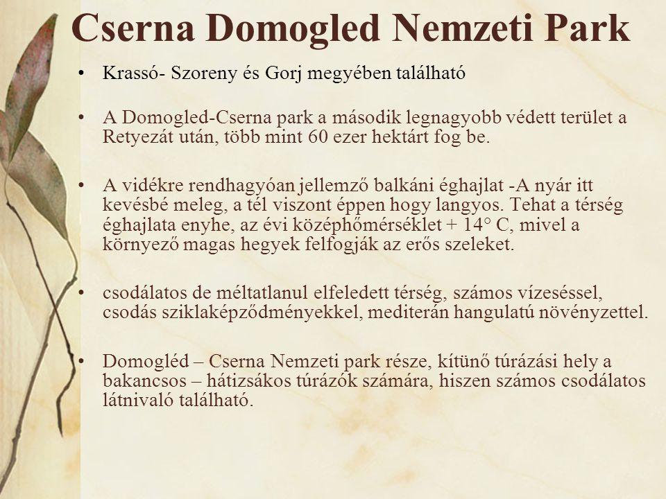 Cserna Domogled Nemzeti Park