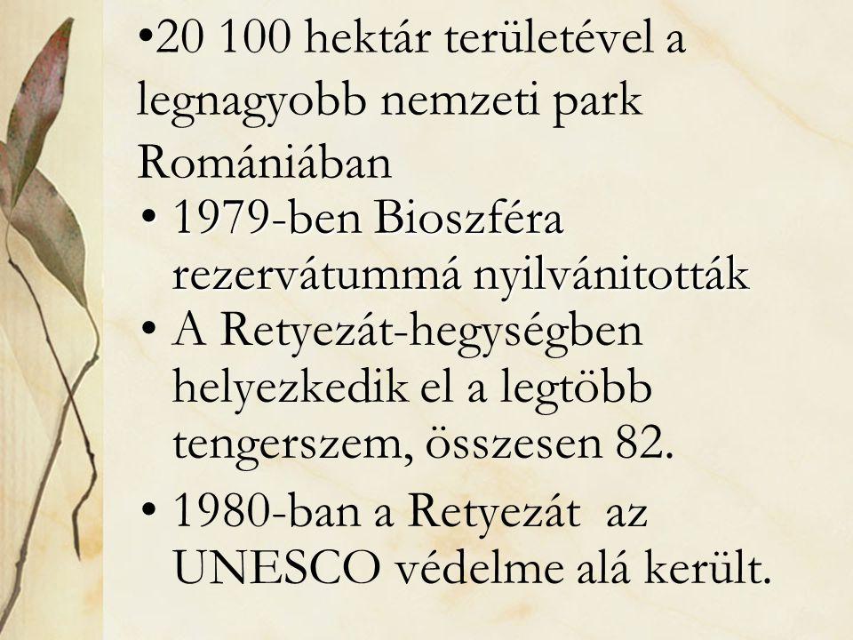 20 100 hektár területével a legnagyobb nemzeti park Romániában