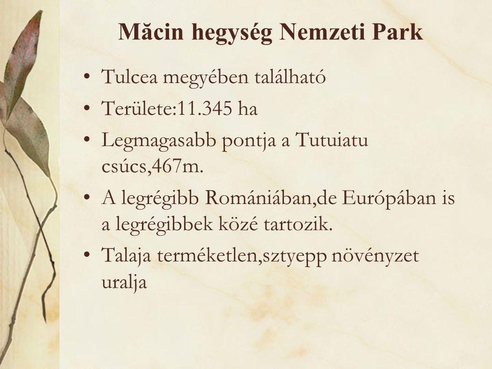 Măcin hegység Nemzeti Park