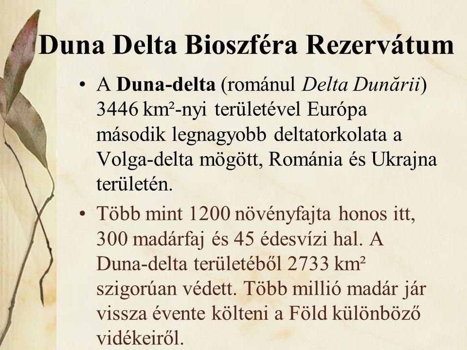 Duna Delta Bioszféra Rezervátum