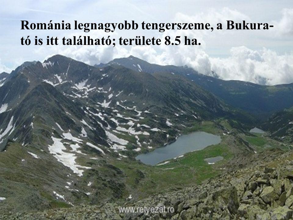 Románia legnagyobb tengerszeme, a Bukura-tó is itt található; területe 8.5 ha.