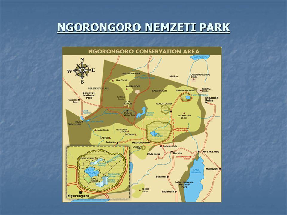 NGORONGORO NEMZETI PARK
