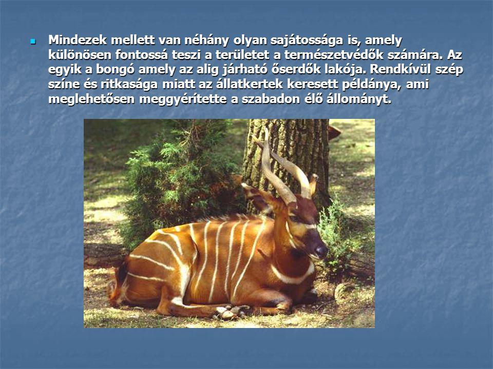 Mindezek mellett van néhány olyan sajátossága is, amely különösen fontossá teszi a területet a természetvédők számára.