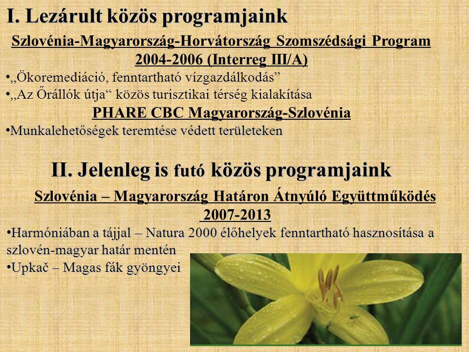 I. Lezárult közös programjaink