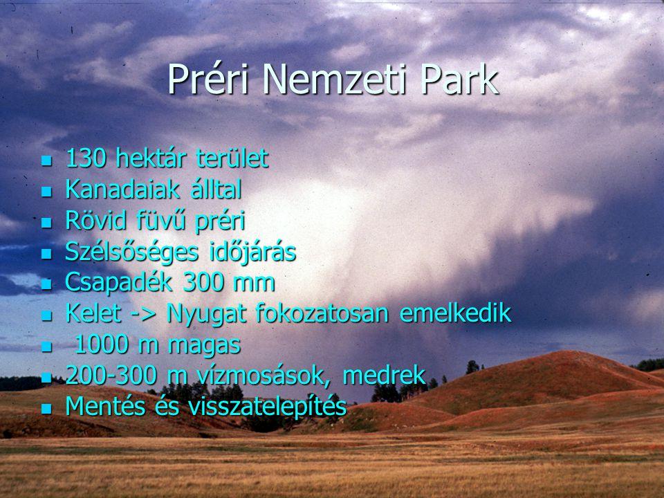 Préri Nemzeti Park 130 hektár terület Kanadaiak álltal