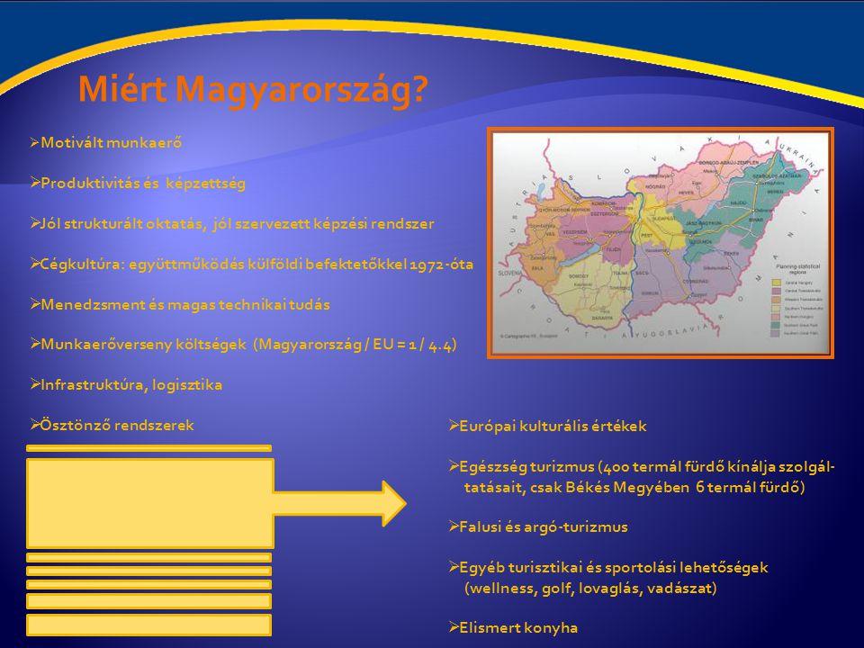 Miért Magyarország Produktivitás és képzettség