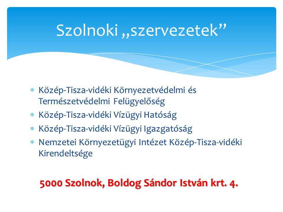 """Szolnoki """"szervezetek"""