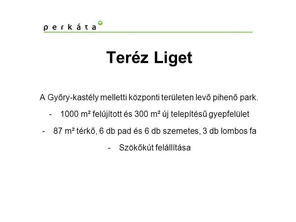 Teréz Liget A Győry-kastély melletti központi területen levő pihenő park. 1000 m² felújított és 300 m² új telepítésű gyepfelület.