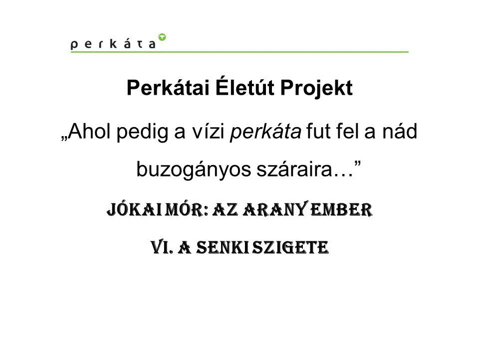 Perkátai Életút Projekt Jókai Mór: Az arany ember