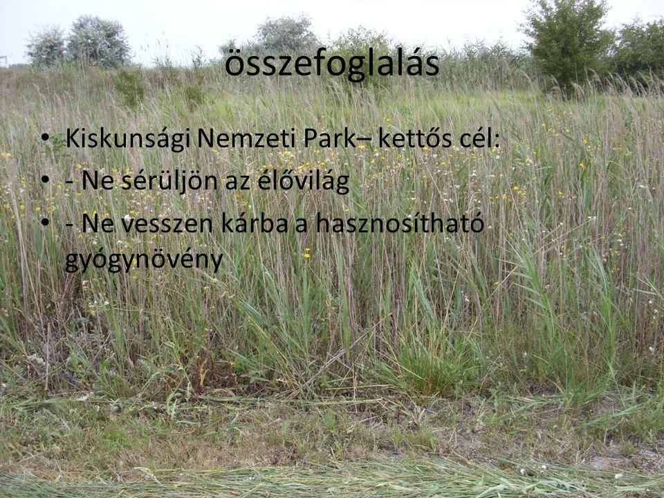összefoglalás Kiskunsági Nemzeti Park– kettős cél: