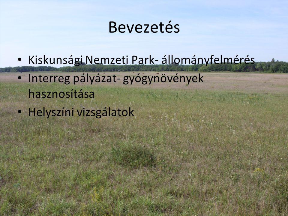 Bevezetés Kiskunsági Nemzeti Park- állományfelmérés