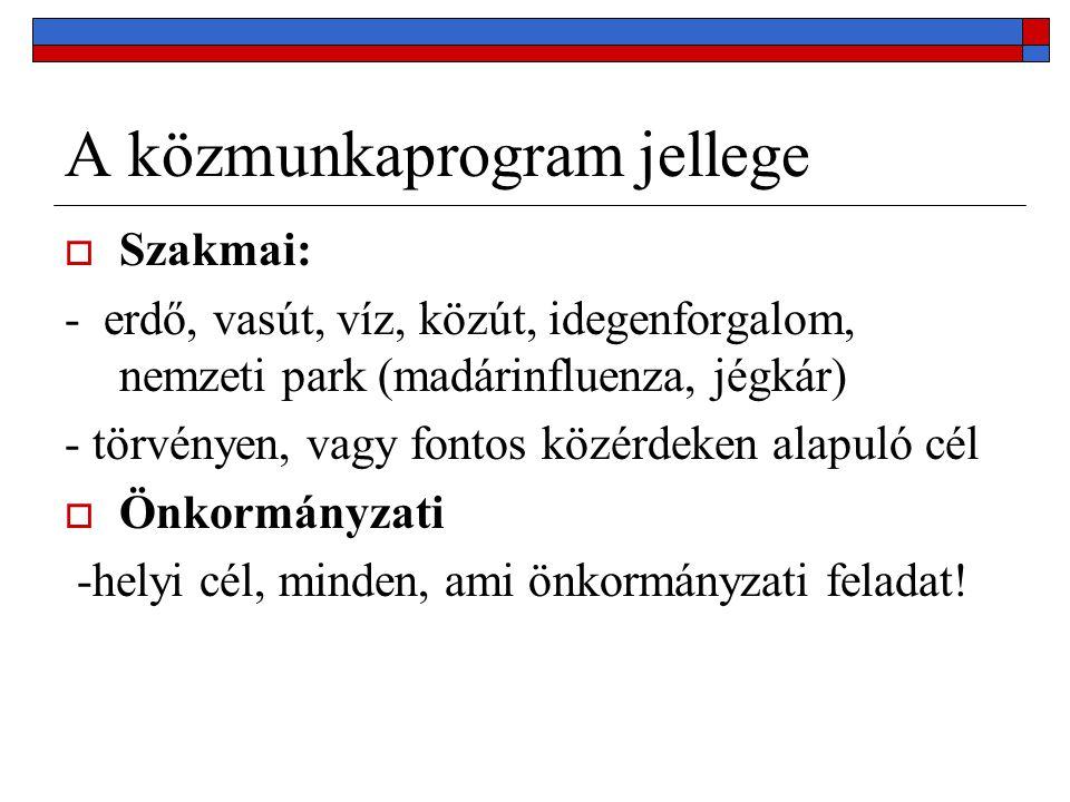 A közmunkaprogram jellege