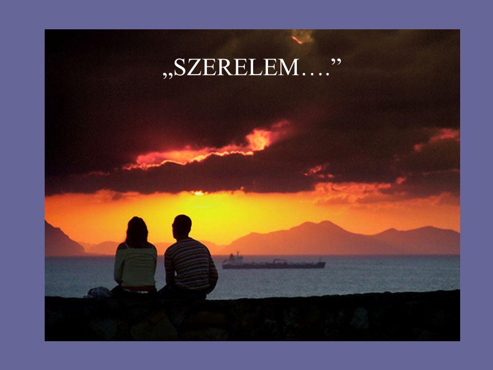 """""""SZERELEM…."""