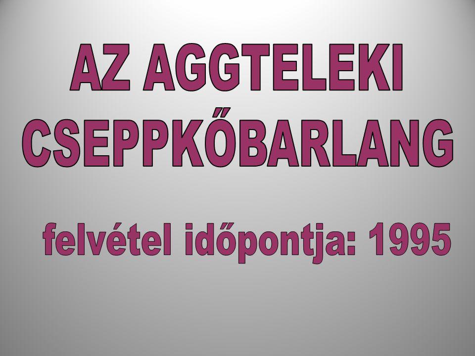 AZ AGGTELEKI CSEPPKŐBARLANG felvétel időpontja: 1995