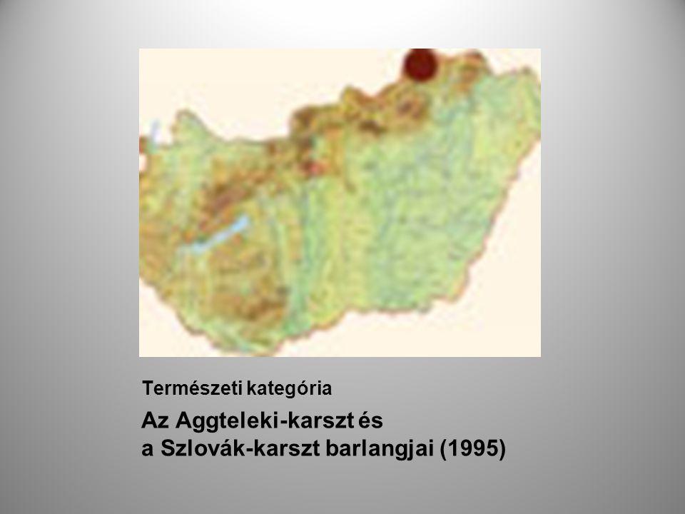 Az Aggteleki-karszt és a Szlovák-karszt barlangjai (1995)