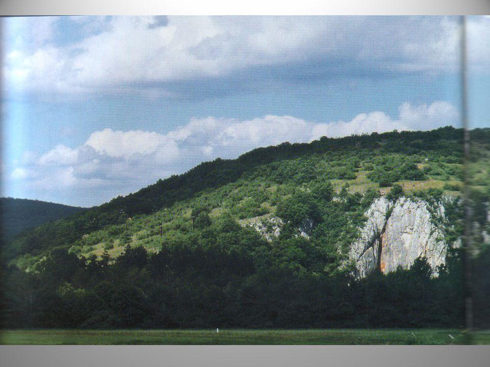 A Magyarország északkeleti és Szlovákia délkeleti határán elterülő Aggteleki- és Szlovák-karszt természeti és kultúrtörténeti értékekben egyedülállóan gazdag