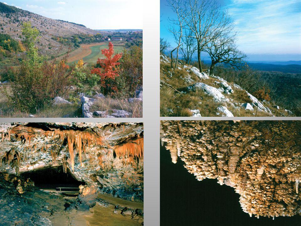 az UNESCO Világörökség Listájára való felvétele mellett szóló legfőbb szakmai érv a felszín alatti világ természeti formáinak rendkívüli változatossága