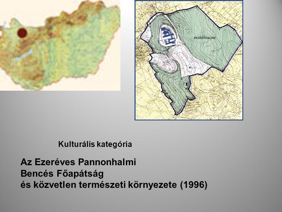 A valamikori Pannónia szent hegyének (Mons Sacer Pannoniae) monostora