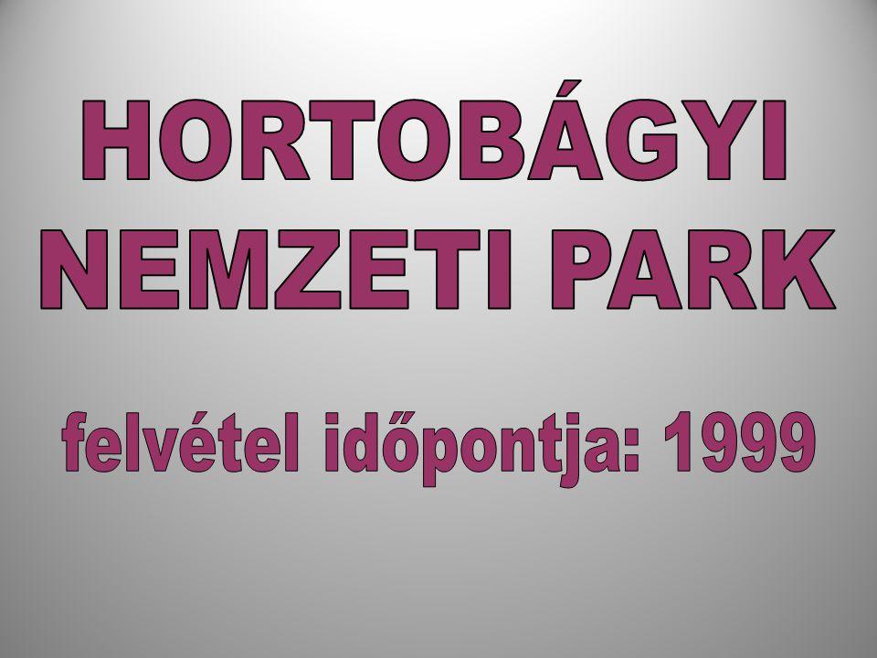 HORTOBÁGYI NEMZETI PARK felvétel időpontja: 1999