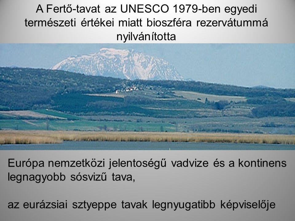 A Fertő-tavat az UNESCO 1979-ben egyedi természeti értékei miatt bioszféra rezervátummá nyilvánította
