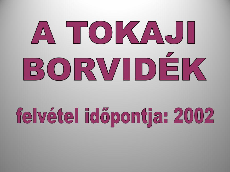 A TOKAJI BORVIDÉK felvétel időpontja: 2002