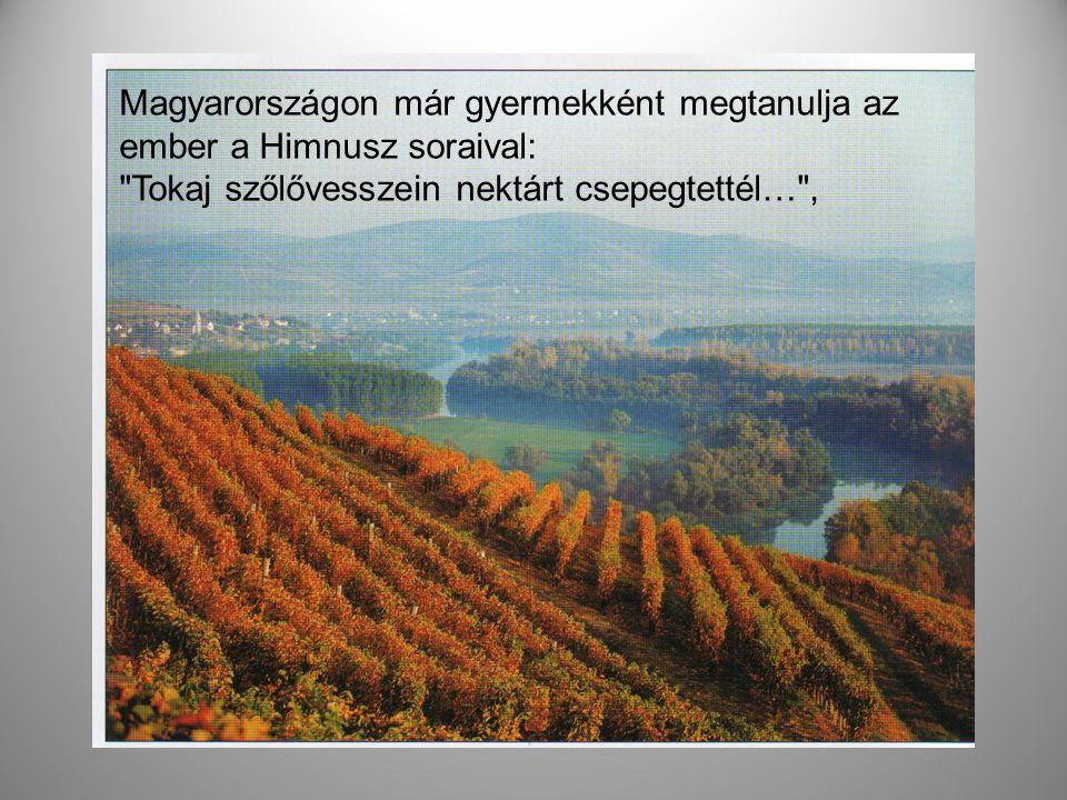 Magyarországon már gyermekként megtanulja az ember a Himnusz soraival: