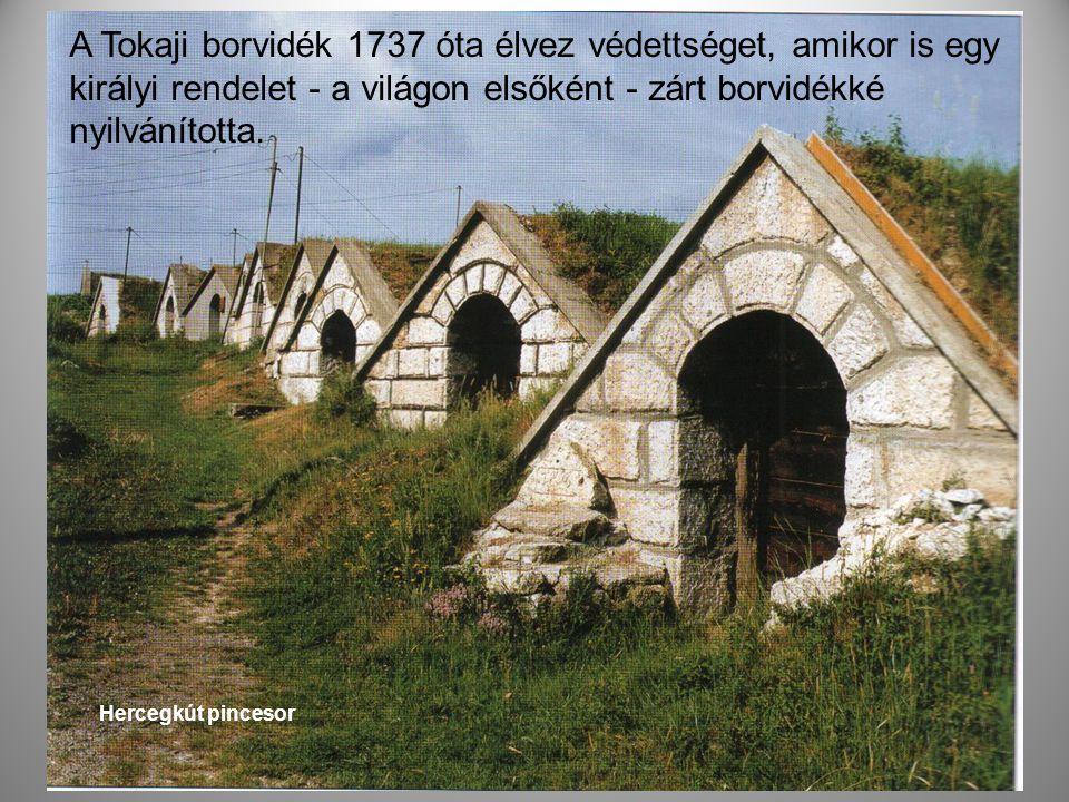 A Tokaji borvidék 1737 óta élvez védettséget, amikor is egy királyi rendelet - a világon elsőként - zárt borvidékké nyilvánította.