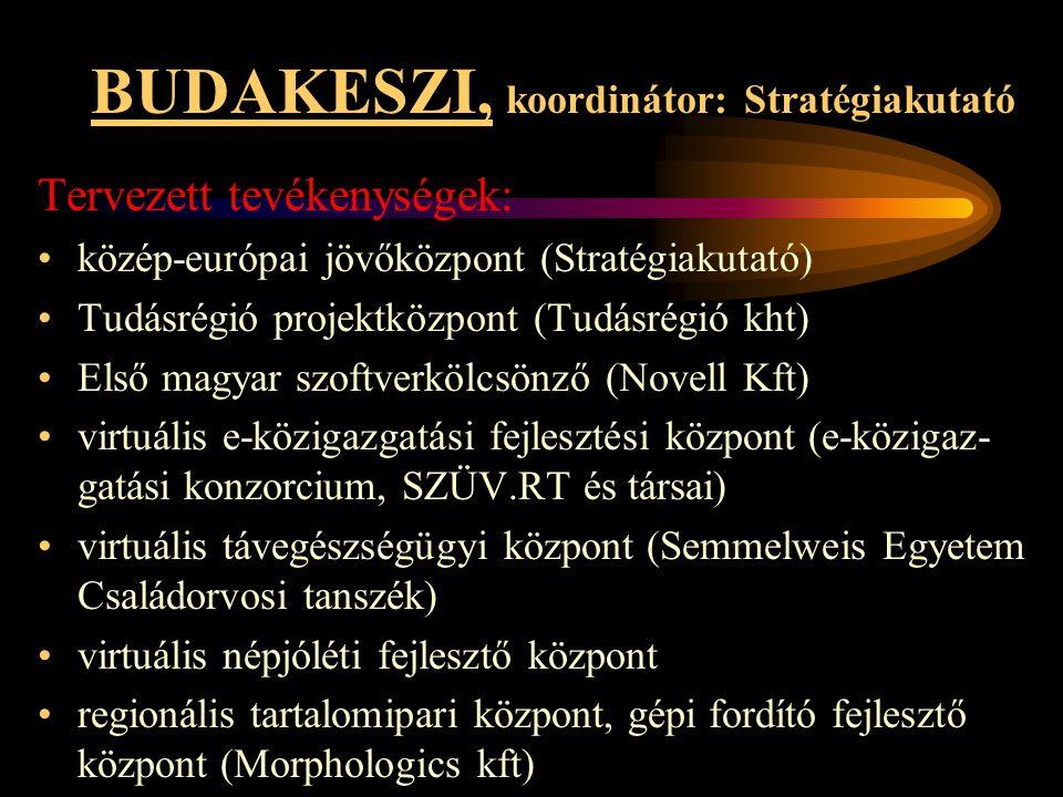 BUDAKESZI, koordinátor: Stratégiakutató