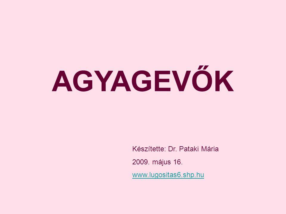 AGYAGEVŐK Készítette: Dr. Pataki Mária 2009. május 16.