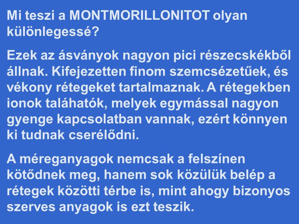 Mi teszi a MONTMORILLONITOT olyan különlegessé