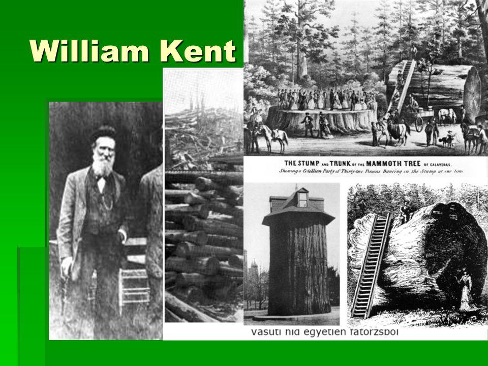 William Kent Gazdag politikus Chicagoban Majd természetbarát birtokos