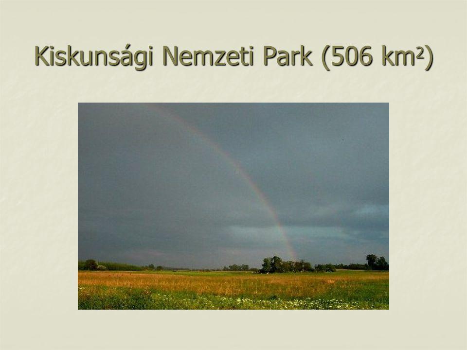 Kiskunsági Nemzeti Park (506 km2)