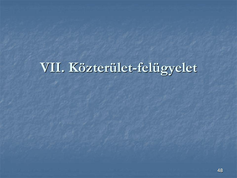 VII. Közterület-felügyelet