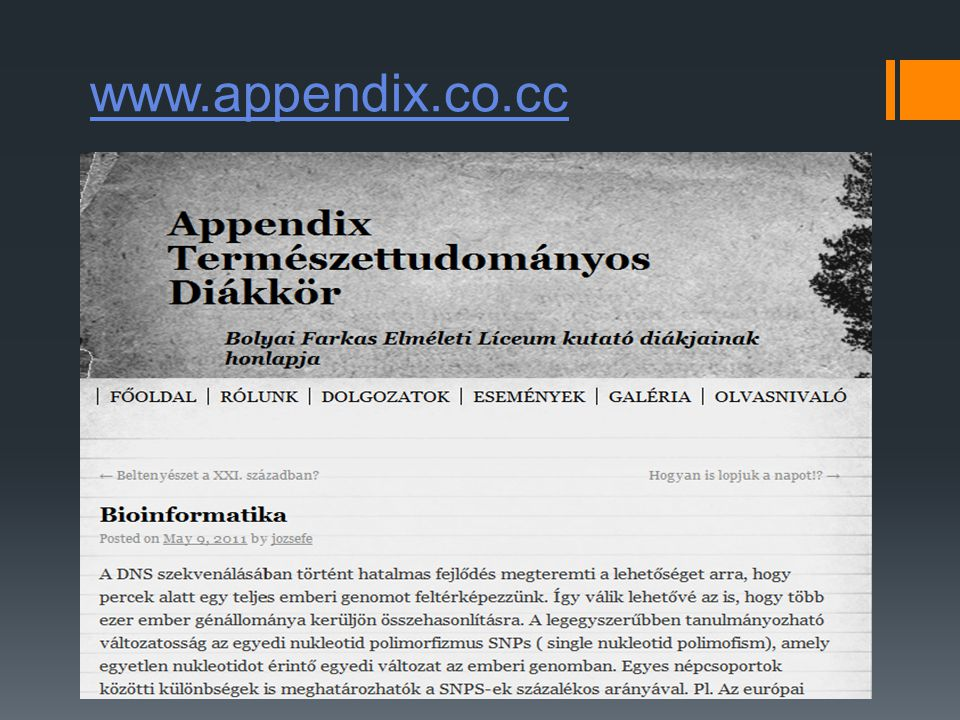 www.appendix.co.cc