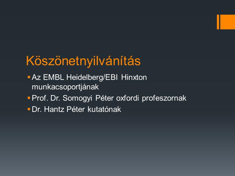Köszönetnyilvánítás Az EMBL Heidelberg/EBI Hinxton munkacsoportjának