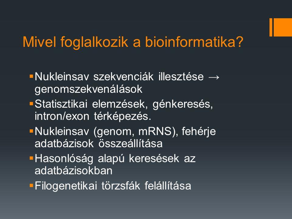 Mivel foglalkozik a bioinformatika