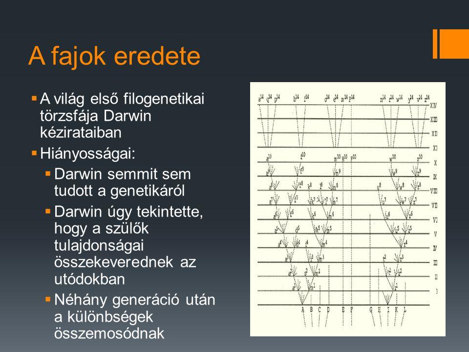 A fajok eredete A világ első filogenetikai törzsfája Darwin kézirataiban. Hiányosságai: Darwin semmit sem tudott a genetikáról.