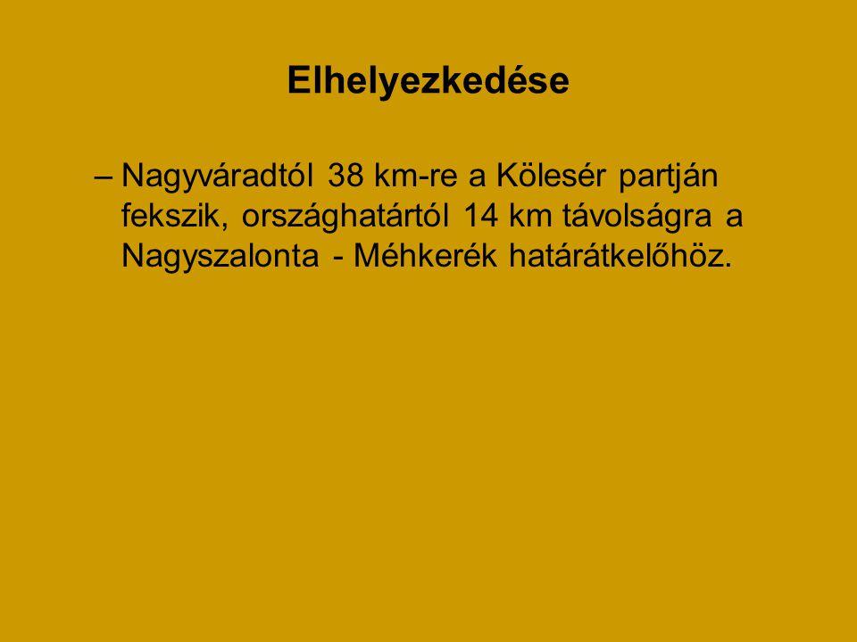 Elhelyezkedése Nagyváradtól 38 km-re a Kölesér partján fekszik, országhatártól 14 km távolságra a Nagyszalonta - Méhkerék határátkelőhöz.