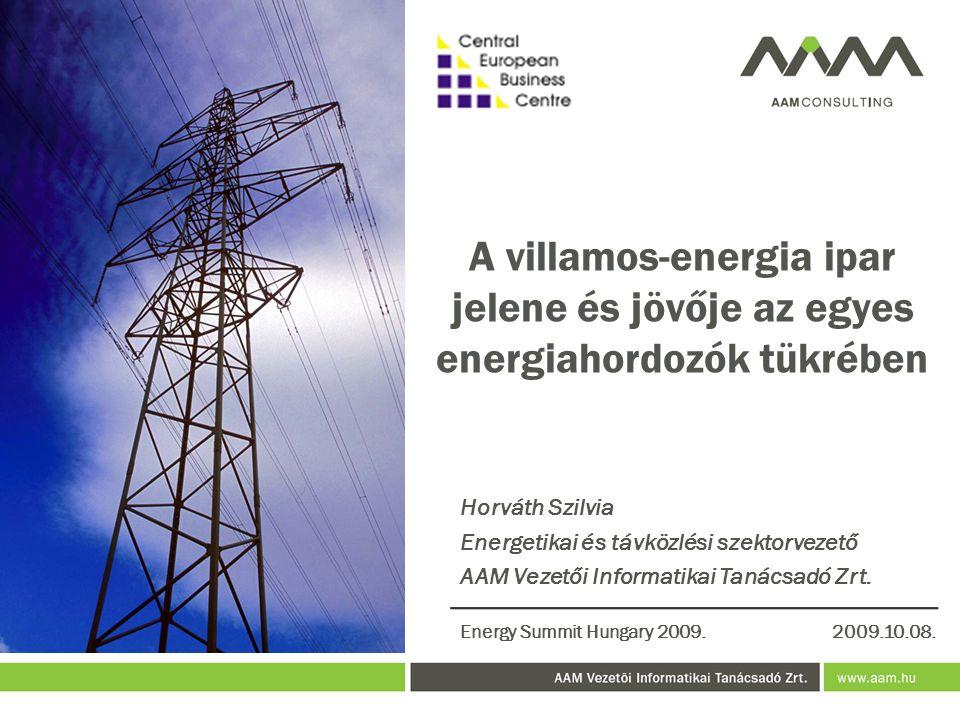 A villamos-energia ipar jelene és jövője az egyes energiahordozók tükrében
