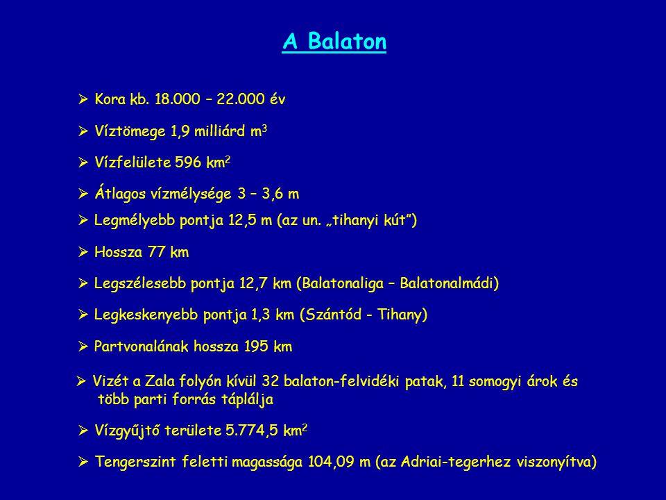 A Balaton Kora kb. 18.000 – 22.000 év Víztömege 1,9 milliárd m3