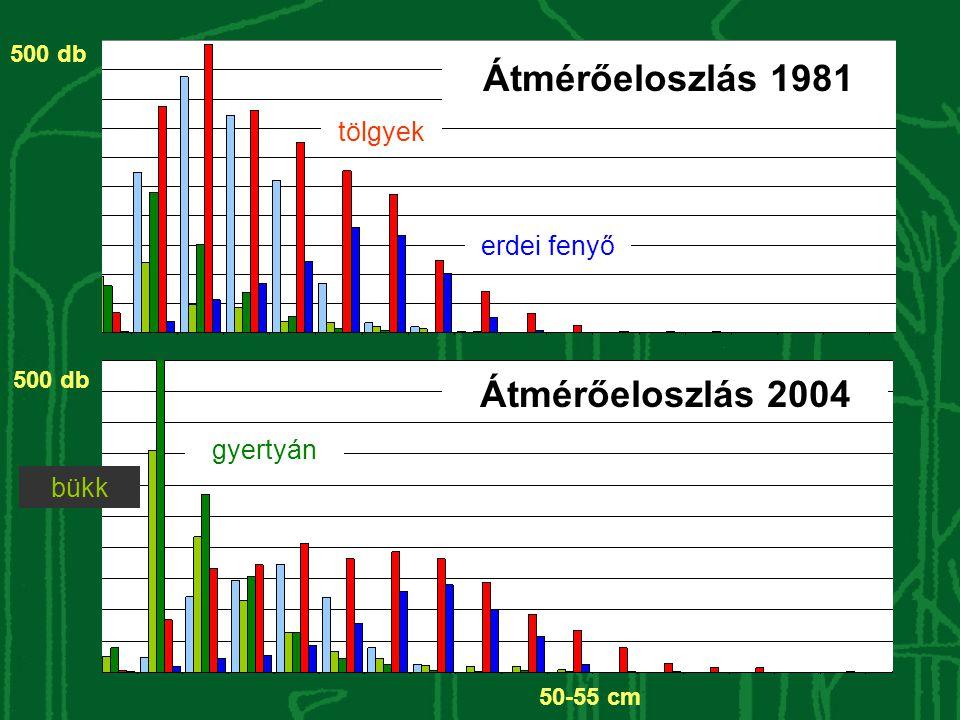Átmérőeloszlás 1981 Átmérőeloszlás 2004
