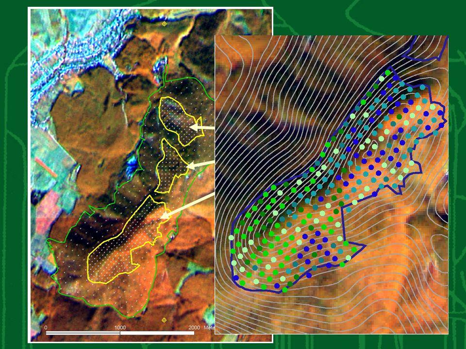 magterületek erdőháló kitűzésre került, a magterületen , a védőzónára ritkább hálózat a tervezett.