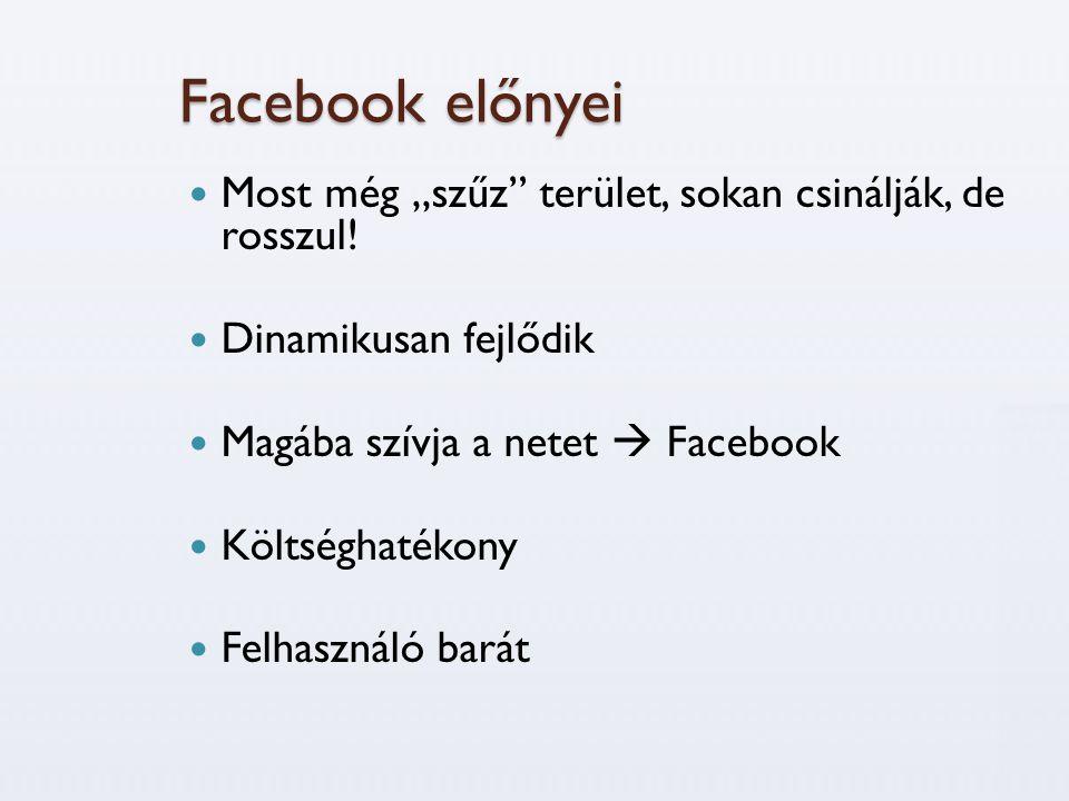 """Facebook előnyei Most még """"szűz terület, sokan csinálják, de rosszul!"""