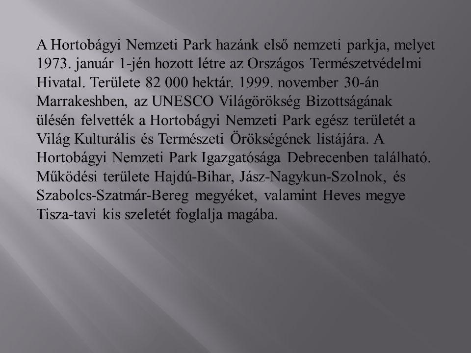 A Hortobágyi Nemzeti Park hazánk első nemzeti parkja, melyet 1973