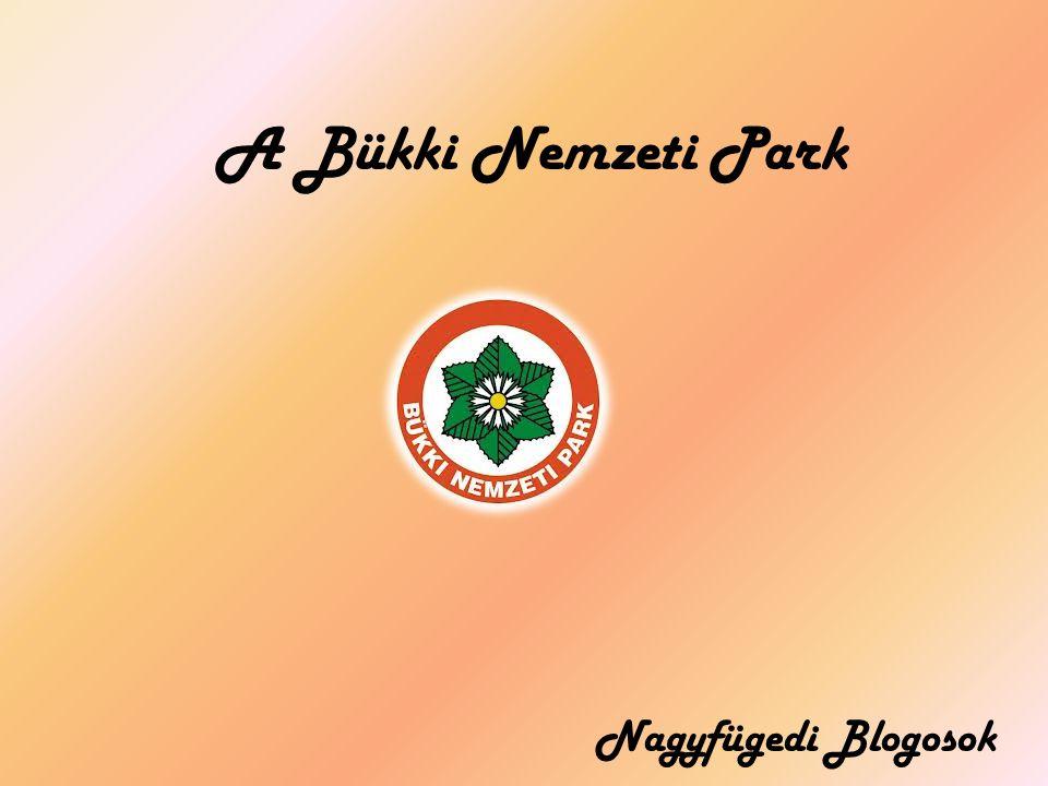A Bükki Nemzeti Park Nagyfügedi Blogosok