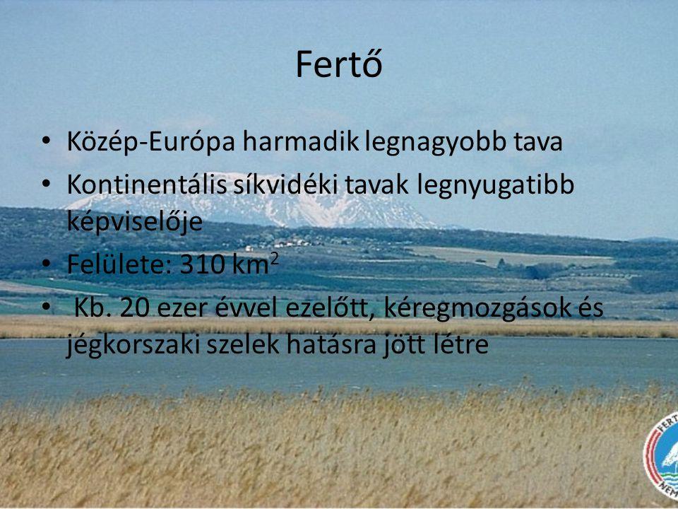 Fertő Közép-Európa harmadik legnagyobb tava